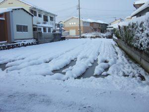 こっちも雪っ!