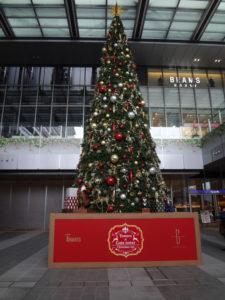 クリスマスツリーがっ!